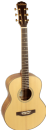 Freshman SONGTRAVNAT Traveller Acoustic Guitar with Gig Bag